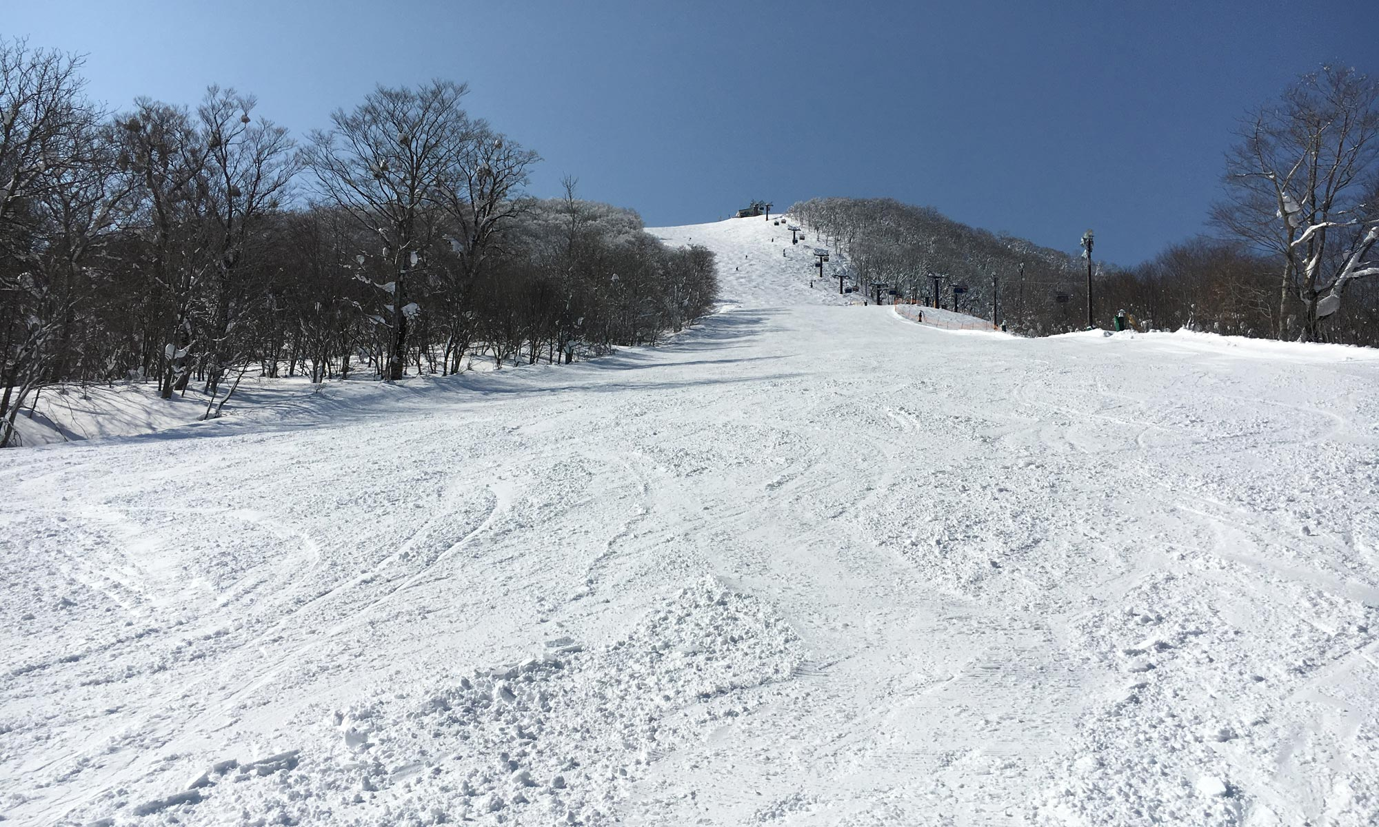 Today'sグランデコスキー場&裏磐梯猫魔スキー場