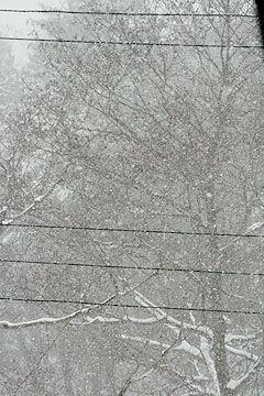 五色沼吹雪