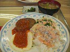 01-28ネコマ 猫まんま定食